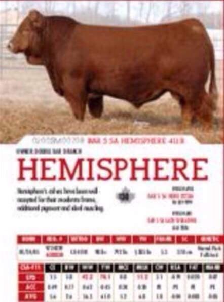 Bar 5 SA Hemisphere 411R