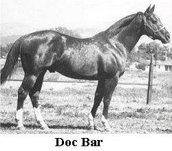 Doc Bar