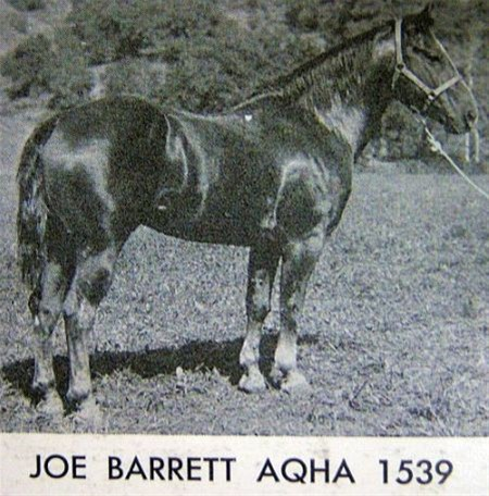 Joe Barrett