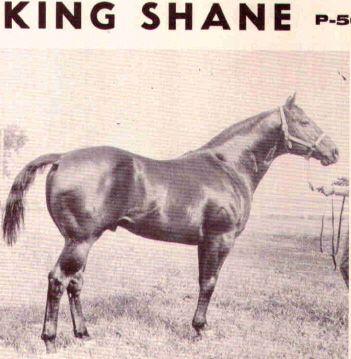 King Shane