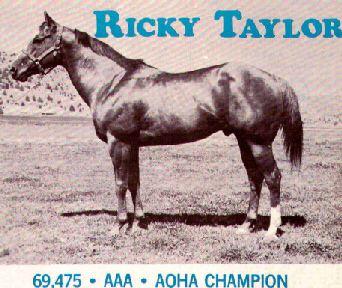 Ricky Taylor