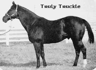 Truly Truckle