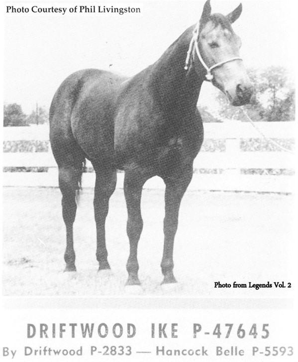 Driftwood Ike