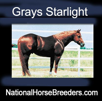 Grays Starlight