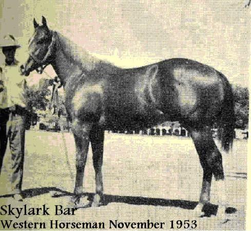 Skylark Bar