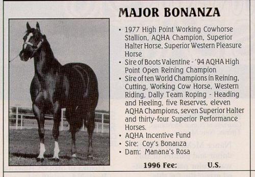 Major Bonanza